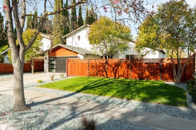 1433 Blackstone Ave, San Jose, CA 95118 (#ML81733424) :: The Goss Real Estate Group, Keller Williams Bay Area Estates