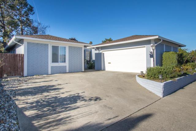 1241 Ribbon St, Foster City, CA 94404 (#ML81733908) :: Perisson Real Estate, Inc.