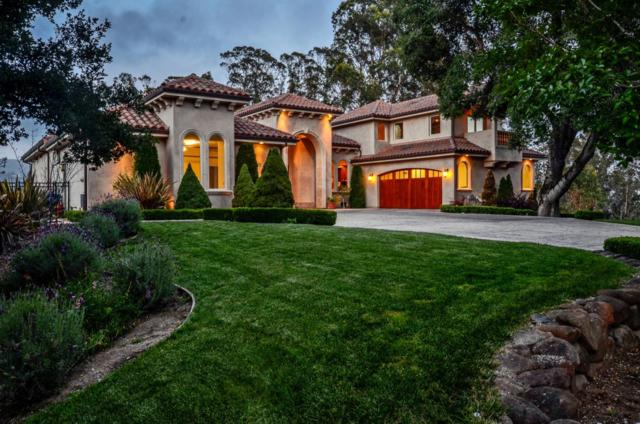 411 Whippet Run, Corralitos, CA 95076 (#ML81734394) :: The Kulda Real Estate Group