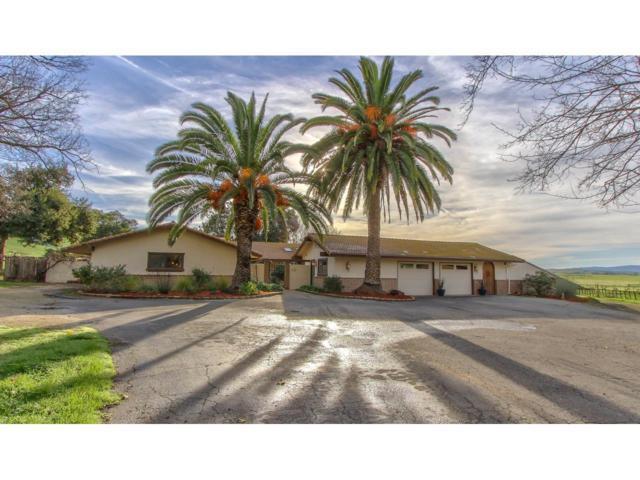 381 Carpenter Dr, Hollister, CA 95023 (#ML81734568) :: The Goss Real Estate Group, Keller Williams Bay Area Estates