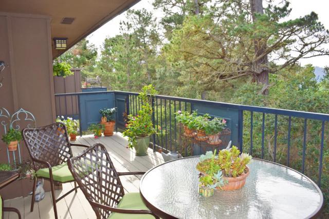 281 Del Mesa Carmel, Carmel Valley, CA 93923 (#ML81734706) :: Strock Real Estate