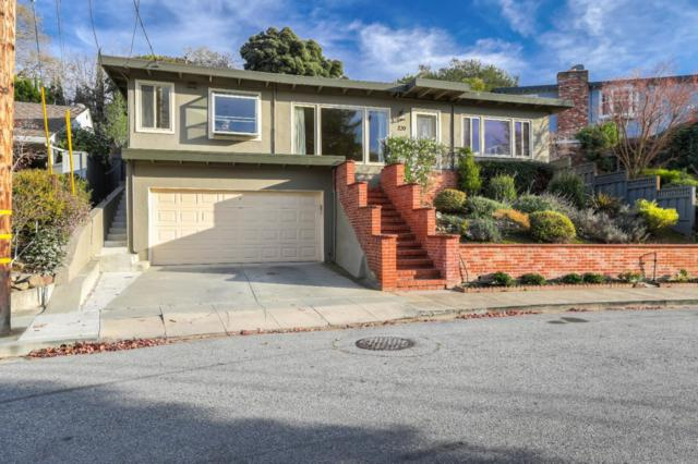 220 Oakview Dr, San Carlos, CA 94070 (#ML81734913) :: The Warfel Gardin Group