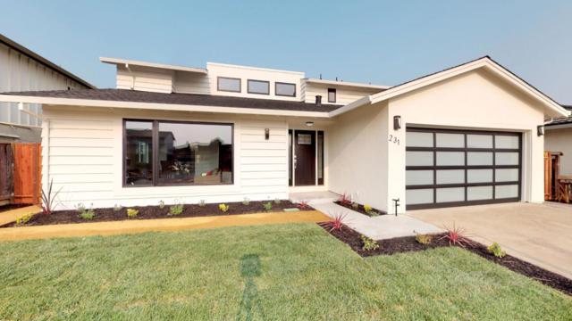 231 Pelican Ct, Foster City, CA 94404 (#ML81735051) :: Perisson Real Estate, Inc.
