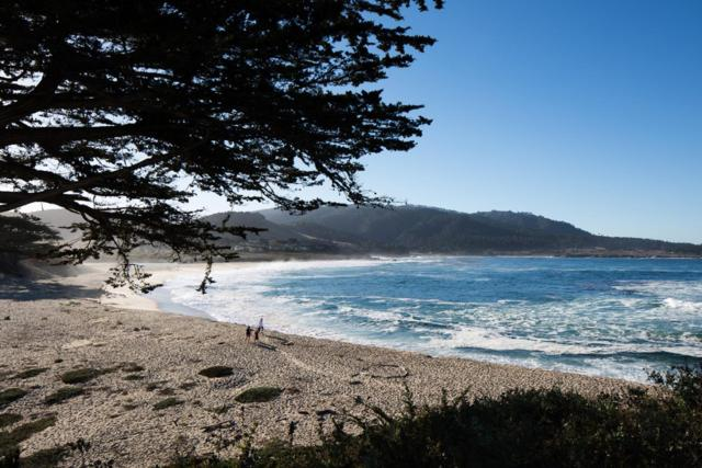 26399 Scenic Rd, Carmel, CA 93923 (#ML81735328) :: Live Play Silicon Valley