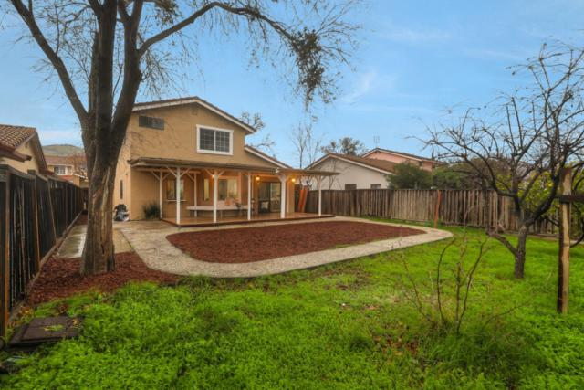 3183 Whiteleaf Ct, San Jose, CA 95148 (#ML81735664) :: The Warfel Gardin Group