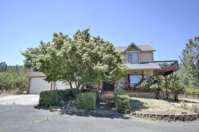 9545 Penson Ct, Kelseyville, CA 95451 (#ML81735989) :: The Goss Real Estate Group, Keller Williams Bay Area Estates