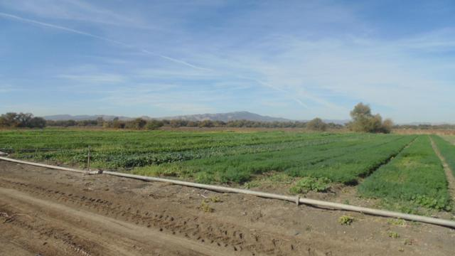9004 Frazier Lake Rd, Hollister, CA 95023 (#ML81736592) :: The Gilmartin Group