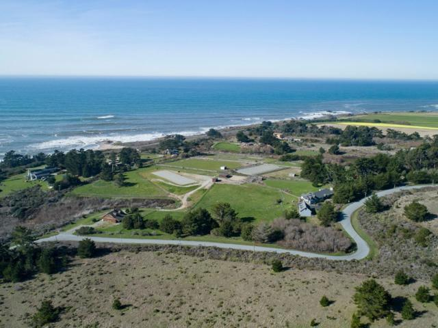 501 Bean Hollow Rd, Pescadero, CA 94060 (#ML81736612) :: Strock Real Estate