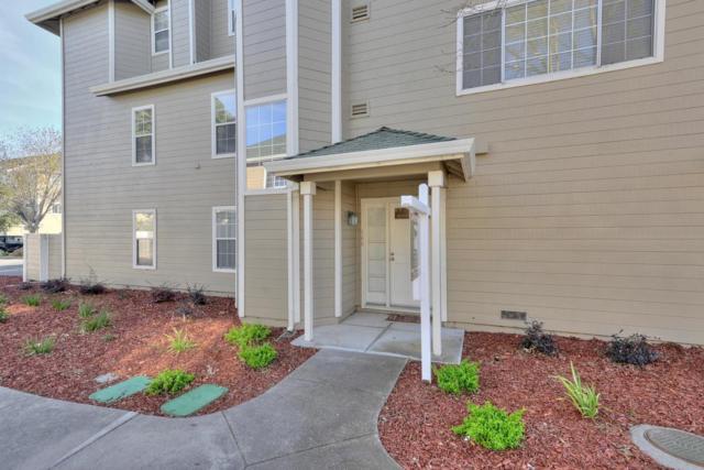 308 Treasure Island Dr, Belmont, CA 94002 (#ML81736955) :: Strock Real Estate