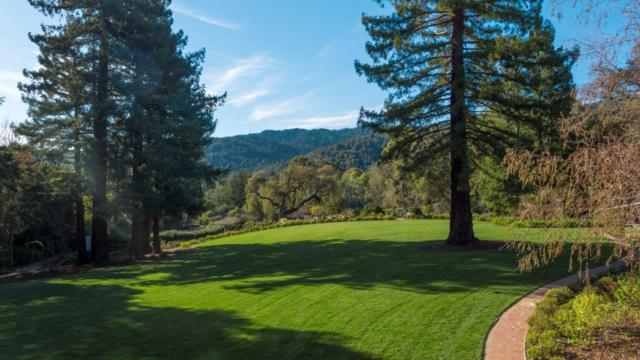 309 Manuella Ave, Woodside, CA 94062 (#ML81737027) :: The Kulda Real Estate Group