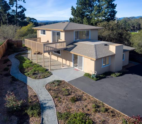 1141 San Andreas Rd, La Selva Beach, CA 95076 (#ML81737052) :: Strock Real Estate
