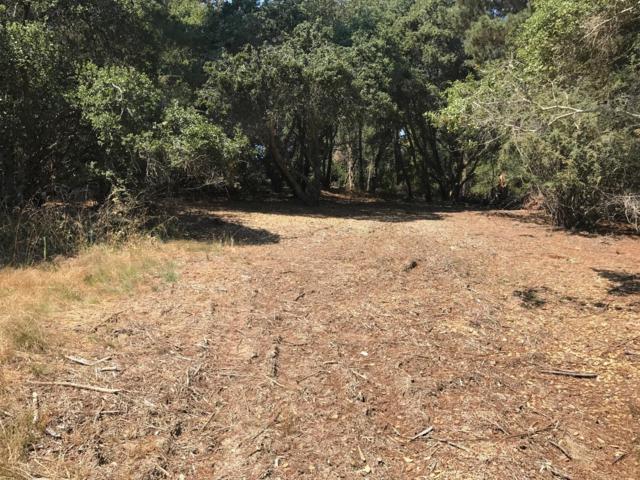 0 Blake Ave, Watsonville, CA 95076 (#ML81737445) :: The Kulda Real Estate Group