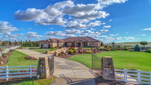9761 Saddlebred Ct, Wilton, CA 95693 (#ML81737802) :: The Goss Real Estate Group, Keller Williams Bay Area Estates