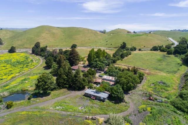 4140 Felter Rd, Milpitas, CA 95035 (#ML81738321) :: Julie Davis Sells Homes