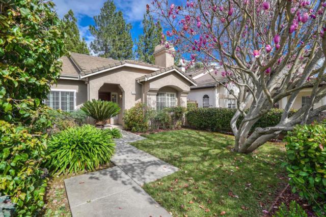 1505 Majorca Dr, Morgan Hill, CA 95037 (#ML81738362) :: Julie Davis Sells Homes