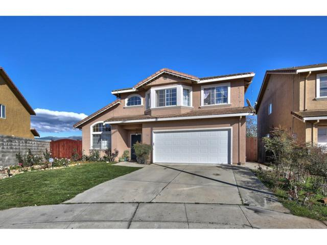 1138 Eagle Dr, Salinas, CA 93905 (#ML81738753) :: Strock Real Estate