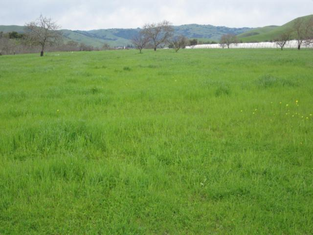 0 Los Viboras Rd, Hollister, CA 95023 (#ML81738882) :: The Gilmartin Group