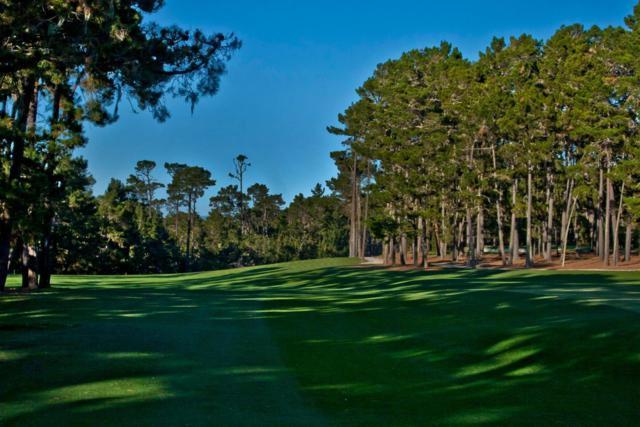 1407 Viscaino Rd, Pebble Beach, CA 93953 (#ML81738908) :: The Warfel Gardin Group