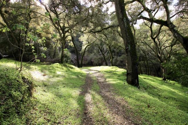 108 Hitchcock Cyn, Carmel Valley, CA 93924 (#ML81739050) :: Strock Real Estate