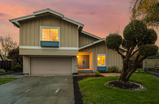 7251 Pinedale Ct, San Jose, CA 95139 (#ML81739159) :: The Gilmartin Group