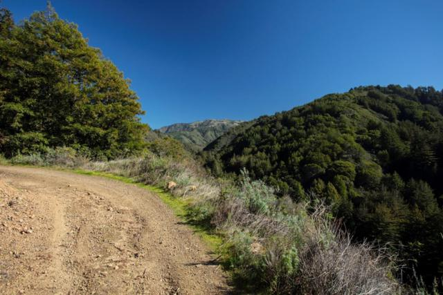 9661 Sycamore Canyon Rd, Big Sur, CA 93920 (#ML81739190) :: Strock Real Estate
