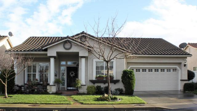1349 Table Mountain Dr, Oakdale, CA 95361 (#ML81739309) :: Julie Davis Sells Homes
