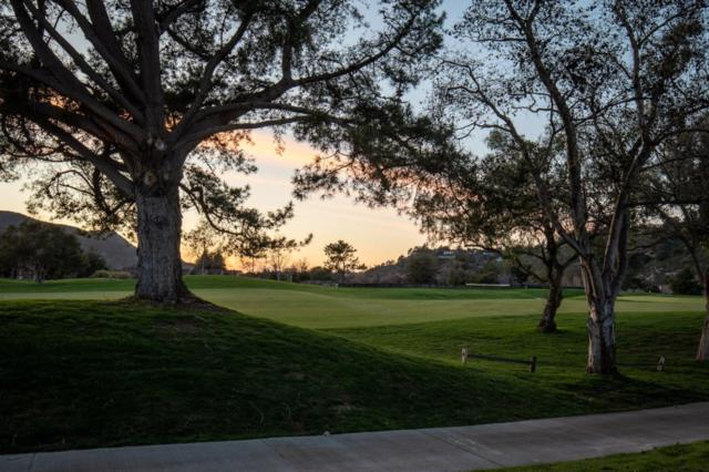 28056 Hawk Ct, Carmel, CA 93923 (#ML81739422) :: The Goss Real Estate Group, Keller Williams Bay Area Estates