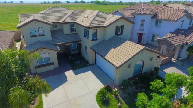 16533 Upper Pasture, Lathrop, CA 95330 (#ML81739508) :: Strock Real Estate