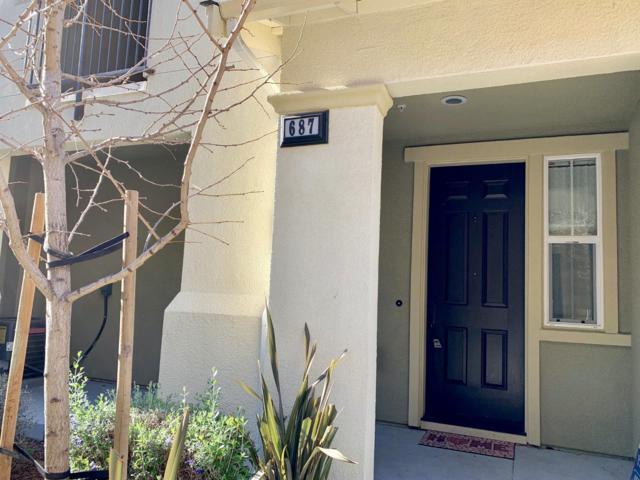 687 Elderberry Dr, Milpitas, CA 95035 (#ML81739579) :: Strock Real Estate