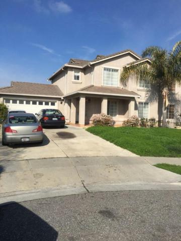3137 Cunningham Lake Ct, San Jose, CA 95148 (#ML81739676) :: Julie Davis Sells Homes