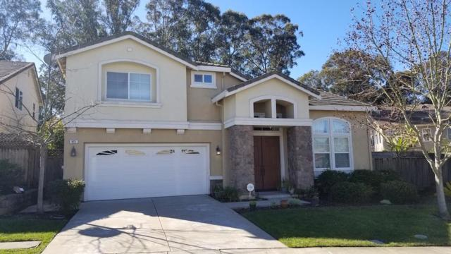 815 Meadow View Dr, Richmond, CA 94806 (#ML81739784) :: The Kulda Real Estate Group