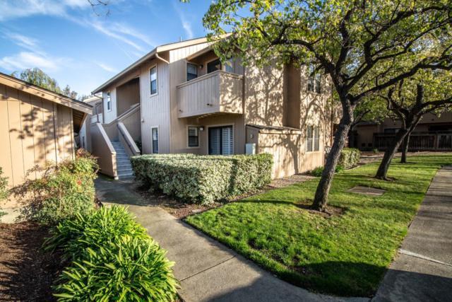 578 Ironwood Ter 8, Sunnyvale, CA 94086 (#ML81739822) :: Julie Davis Sells Homes