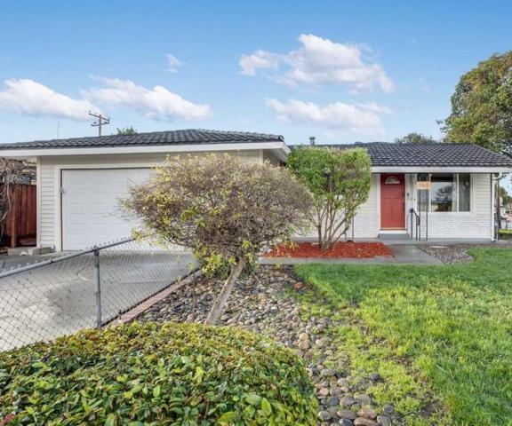 753 Laurie Ave, Santa Clara, CA 95054 (#ML81739823) :: Julie Davis Sells Homes