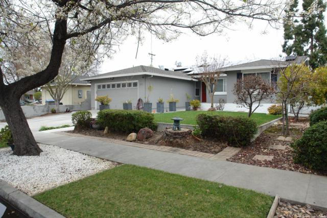37 Lemon Blossom Ct, San Jose, CA 95123 (#ML81739880) :: Julie Davis Sells Homes