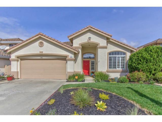 343 Chardonnay Dr, Salinas, CA 93906 (#ML81741290) :: Julie Davis Sells Homes