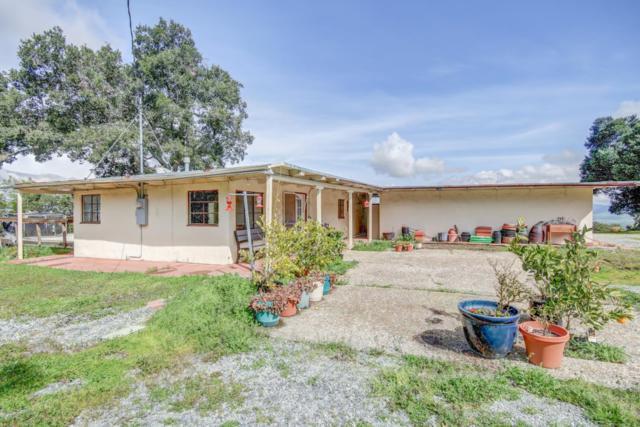 6073 San Juan Canyon Rd, San Juan Bautista, CA 95045 (#ML81741390) :: The Kulda Real Estate Group