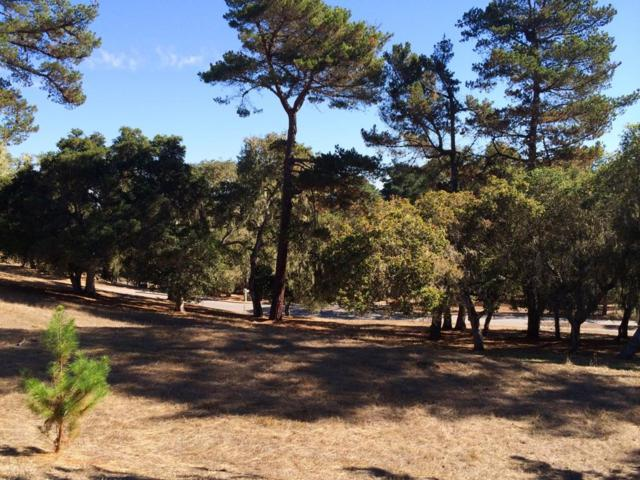 24262 Via Malpaso (Lot 28), Monterey, CA 93940 (#ML81741561) :: Strock Real Estate