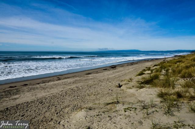 101 Shell Dr 279, Watsonville, CA 95076 (#ML81741839) :: Strock Real Estate