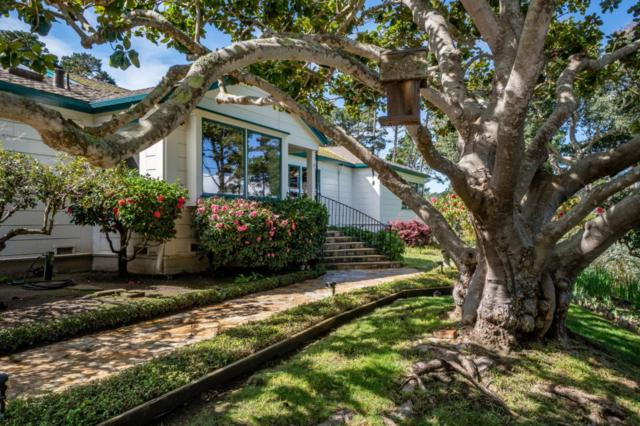 587 Viejo Rd, Carmel, CA 93923 (#ML81742322) :: The Goss Real Estate Group, Keller Williams Bay Area Estates