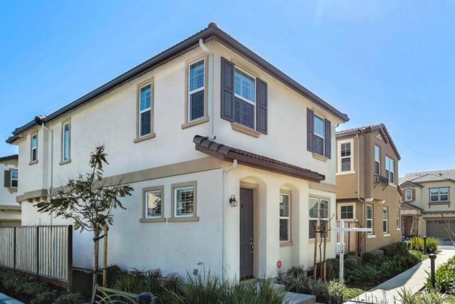 1513 Sylvia St, Hayward, CA 94545 (#ML81742419) :: The Warfel Gardin Group