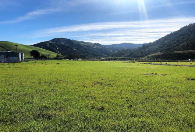 810 Salinas Rd, San Juan Bautista, CA 95045 (#ML81742478) :: The Gilmartin Group