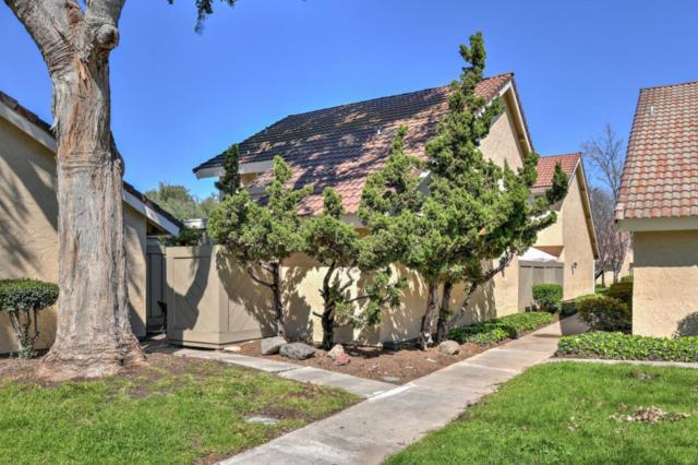 251 Truckee Ln, San Jose, CA 95136 (#ML81742654) :: Perisson Real Estate, Inc.