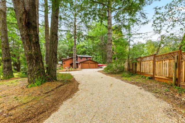 360 Braemoor Dr, Santa Cruz, CA 95060 (#ML81742679) :: The Kulda Real Estate Group
