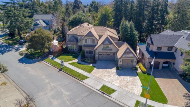 1951 Peregrino Dr, San Jose, CA 95125 (#ML81742755) :: The Kulda Real Estate Group