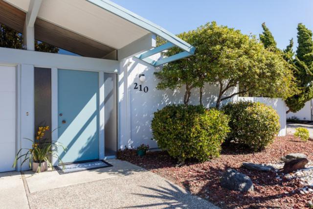 210 Sandpiper Ct, Foster City, CA 94404 (#ML81742795) :: The Gilmartin Group