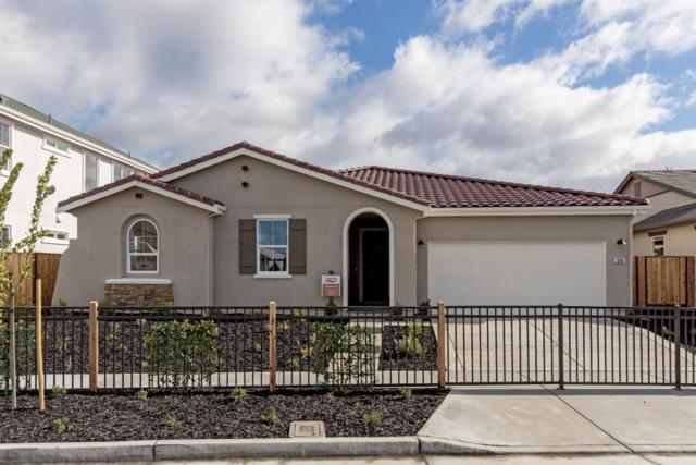 262 Cedar Ct, San Juan Bautista, CA 95045 (#ML81742998) :: The Realty Society