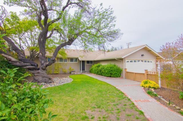 2331 Rosita Ave, Santa Clara, CA 95050 (#ML81743127) :: Live Play Silicon Valley