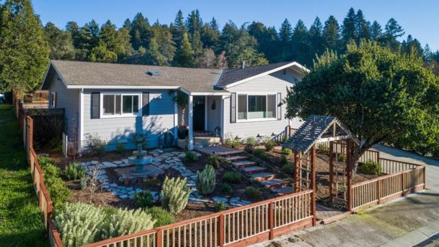 319 S Navarra Dr, Scotts Valley, CA 95066 (#ML81743359) :: The Kulda Real Estate Group