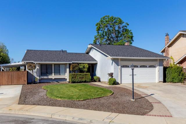 5361 Prince Estates Ct, San Jose, CA 95135 (#ML81743376) :: The Warfel Gardin Group
