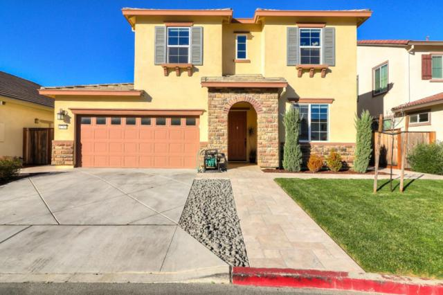 1783 Fennel Pl, Gilroy, CA 95020 (#ML81743409) :: Live Play Silicon Valley